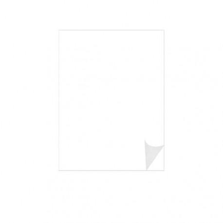 Film adhésif 3M SC50 longue durée Série 50 Blanc Mat SC50-100 100x61cm